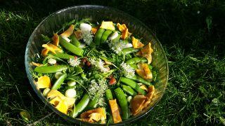 Afbeeldingen/Maaltijdsalade sugar snaps eemstuin.jpg
