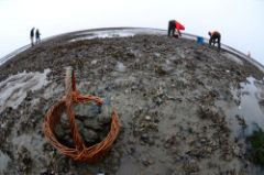 Afbeeldingen/Arrangementen/oester wereldbol.jpg