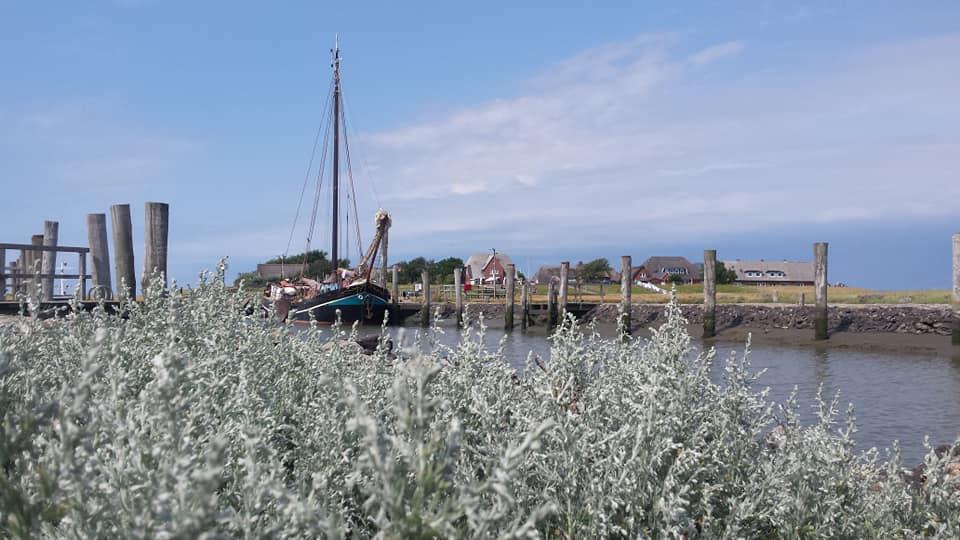 oostzee-zomer-zeiltocht-week