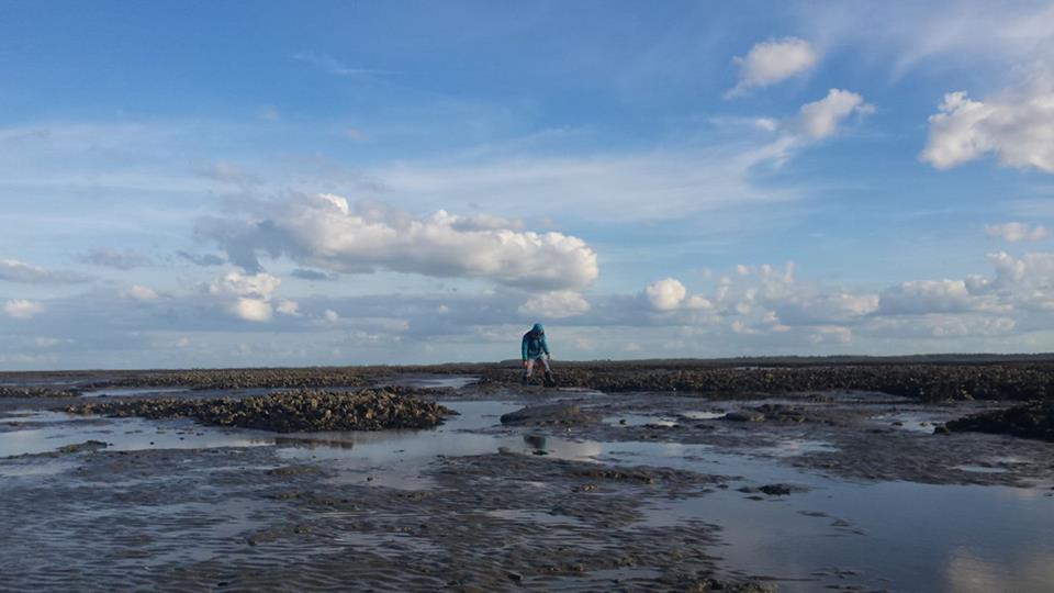 oesters-waddenzee-zeilen-dagexcursie