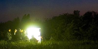 nachtvlinder-avond-zeiltocht-lauwersmeer